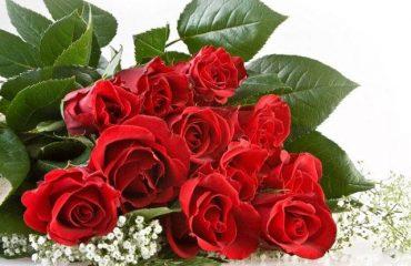 Ý nghĩa 11 bông hồng trong tình yêu