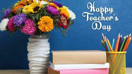 những loại hoa tặng thầy cô giáo