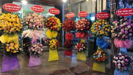chúc mừng khai trương nên tặng hoa gì