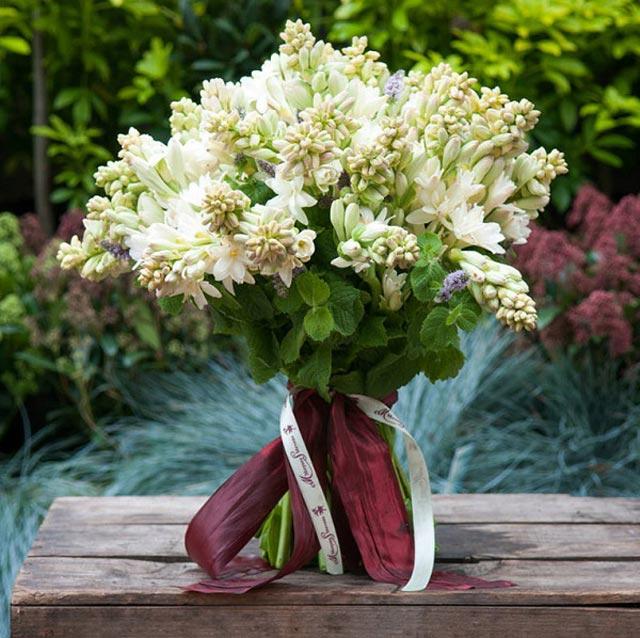 10 loại hoa chưng bàn thờ ngày Tết - hoa huệ