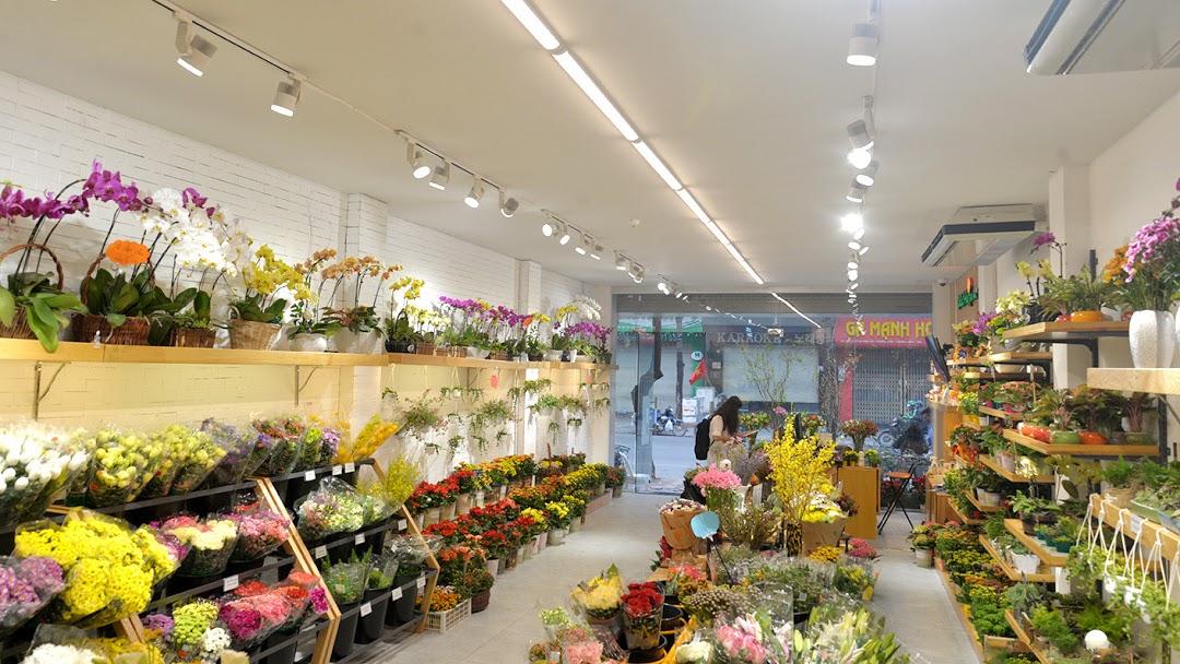 Shop hoa tươi Flowertalk
